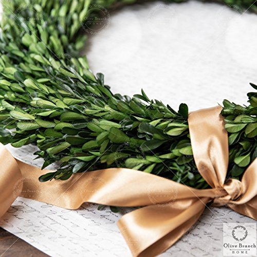 Olive Branch Home Preserved Boxwood Wreath With Straw Back Large Indoor Year Round Green Wreath 20 Inch Round 0 1