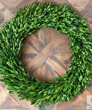 Olive Branch Home Preserved Boxwood Wreath With Straw Back Large Indoor Year Round Green Wreath 20 Inch Round 0 4 300x360