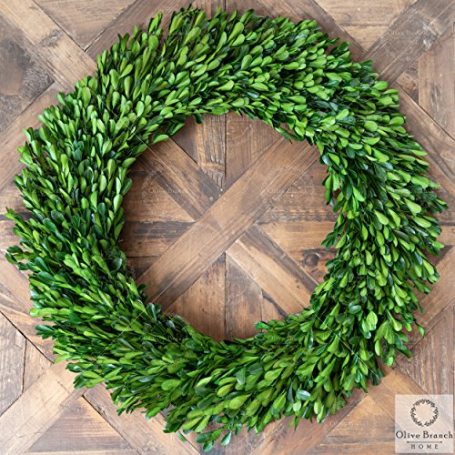 Olive Branch Home Preserved Boxwood Wreath With Straw Back Large Indoor Year Round Green Wreath 20 Inch Round 0 4
