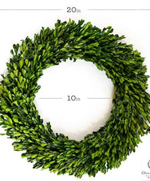 Olive Branch Home Preserved Boxwood Wreath With Straw Back Large Indoor Year Round Green Wreath 20 Inch Round 0 5 300x360