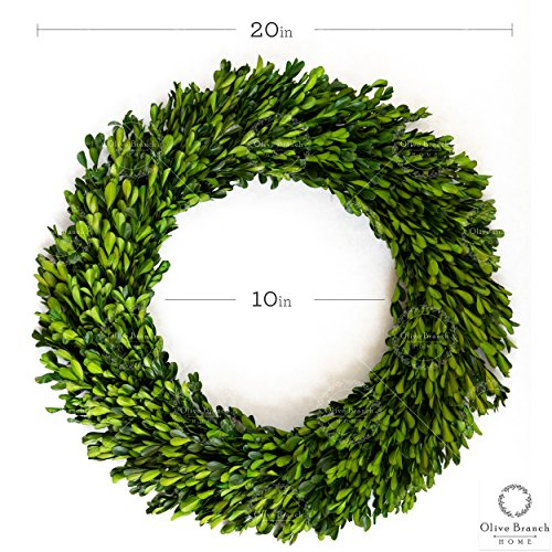 Olive Branch Home Preserved Boxwood Wreath With Straw Back Large Indoor Year Round Green Wreath 20 Inch Round 0 5