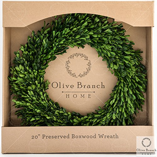 Olive Branch Home Preserved Boxwood Wreath With Straw Back Large Indoor Year Round Green Wreath 20 Inch Round 0