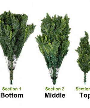 Potalay Artificial Christmas Tree Unlit 45675 Feet Premium Hinged Spruce Full Tree5 FT 0 0 300x360