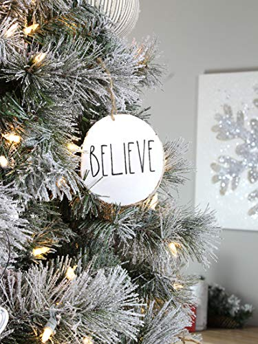 Set Of 4 Modern Farmhouse Rustic Rae Dunn Inspired Christmas Ornaments With FAITH HOPE GRACE BELIEVE Printed On 4 Natural Birch Wood White Circles With Jute Hanger Giftboxed 0 5