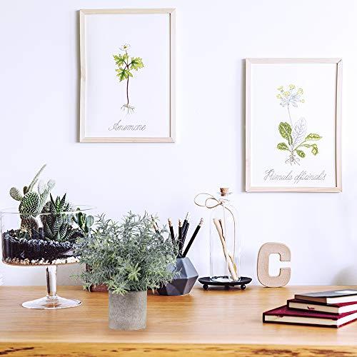Office Desk Accessory,Office Desk,Office Decor,Desk Decor,Succulent,Artificial Succulent,Home Decor,Console Decor,Farmhouse Decor,Farmhouse