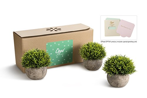 Opps Mini Artificial Plants Plastic Fake Green Grass Topiary Shrubs With Gray Pot For Home Dcor Set Of 3 0 0