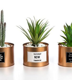 Opps Mini Artificial Plants Plastic Green Grass Cactus With Special Golden Can Pot Design For Home Dcor Set Of 3 0 300x333