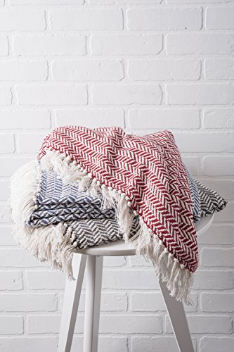 DII Modern Farmhouse Cotton Herringbone Blanket Throw With Fringe For Chair Couch Picnic Camping Beach Everyday Use 50 X 60 Herringbone Chevron French Blue 0 4