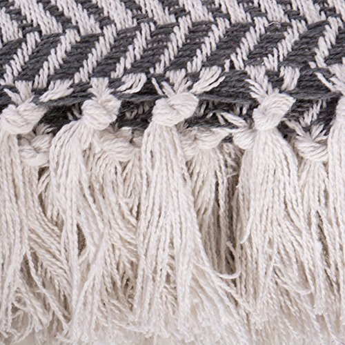 DII Modern Farmhouse Cotton Herringbone Blanket Throw With Fringe For Chair Couch Picnic Camping Beach Everyday Use 50 X 60 Herringbone Chevron Mineral Gray 0 1