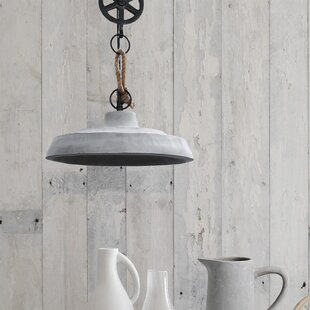 Grinnell+1+-+Light+Single+Dome+Pendant