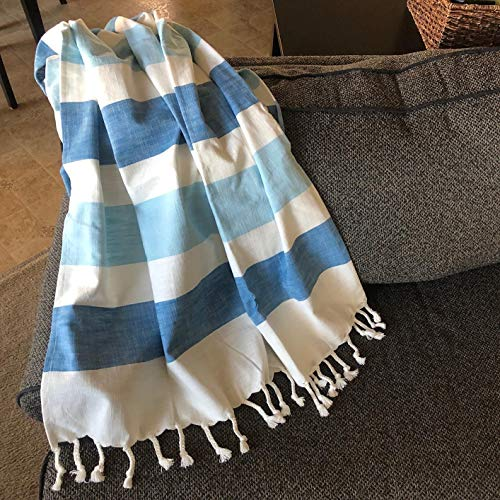 Blue 60 x 50 Lush Decor Farmhouse Stripe Throw Blanket