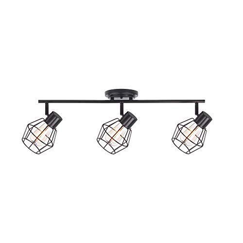 Adjule Ceiling Light Fixture