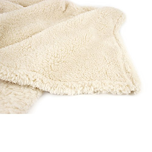 PAVILIA Plush Sherpa Throw Blanket For Couch Sofa Fluffy Microfiber Fleece Throw Soft Fuzzy Cozy Lightweight Solid Latte Cream Blanket 50 X 60 Inches 0 3