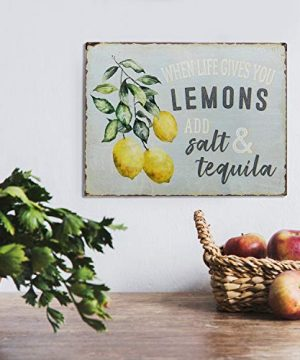 Barnyard Designs When Life Gives You Lemons Add Salt Tequila Funny Retro Vintage Tin Bar Sign Country Home Decor 13 X 10 0 0 300x360