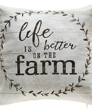 TINAS HOME Farmhouse Quote Decorative Throw Pillows With Down Alternative Stuffing Life Is Better ON The Farm 18x18 Inches Beige 0 300x360