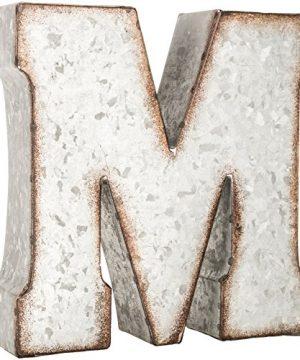Generic Galvanized Metal 3D Letter MGrey Metal 0 300x360