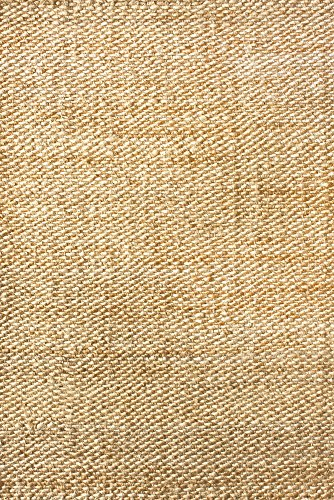 NuLOOM Hailey Handwoven Accent Jute Rug 2 X 3 Natural 0 0