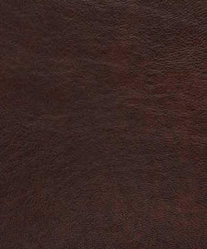 Amazon Brand Stone Beam Brandeberry Leather Sofa 82W Driftwood 0 4 300x360