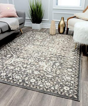 Rugs America Loren Collection Oriental Transitional Area Rug Stone 8 X 10 0 300x360