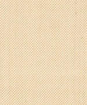 Safavieh Natural Fiber Collection NF443A Tiger Eye Maize And Wheat Sisal Area Rug 8 X 10 0 2 300x360