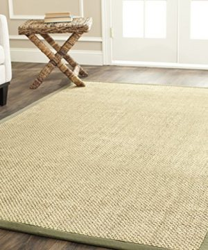Safavieh Natural Fiber Collection NF443C Tiger Eye Natural And Green Sisal Area Rug 6 X 9 0 300x360