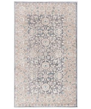 Safavieh Sofia Collection SOF330B Vintage Light Grey And Beige Distressed Area Rug 3 X 5 0 0 300x360