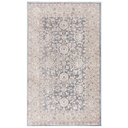 Safavieh Sofia Collection SOF330B Vintage Light Grey And Beige Distressed Area Rug 3 X 5 0 0