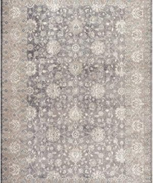 Safavieh Sofia Collection SOF330B Vintage Light Grey And Beige Distressed Area Rug 3 X 5 0 300x360