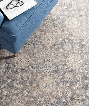 Safavieh Sofia Collection SOF330B Vintage Light Grey And Beige Distressed Area Rug 3 X 5 0 4 300x360