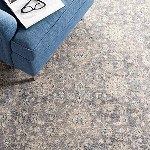 Safavieh Sofia Collection SOF330B Vintage Light Grey And Beige Distressed Area Rug 3 X 5 0 4