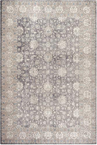 Safavieh Sofia Collection SOF330B Vintage Light Grey And Beige Distressed Area Rug 3 X 5 0