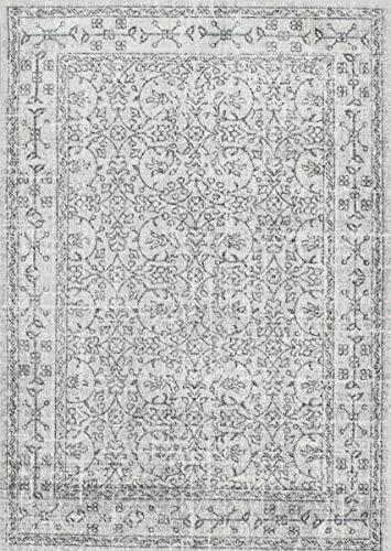 NuLOOM Waddell Vintage Area Rug 8 X 10 Grey 0 0