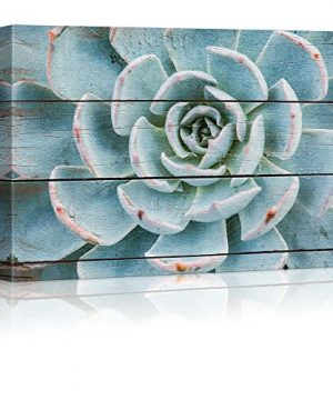 Wall26 Green And Blue Succulent Rustic Floral Arrangements Pastels Colorful Beautiful Wood Grain Antique Canvas Art Home Decor 16x24 Inches 0 300x360