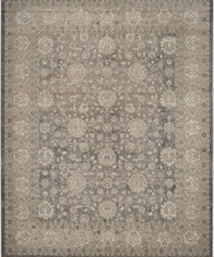 Safavieh Sofia Collection SOF330B Vintage Light Grey And Beige Distressed Area Rug 9 X 12 0 0 300x360