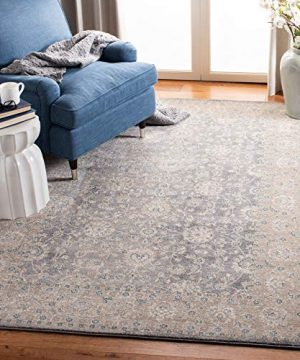 Safavieh Sofia Collection SOF330B Vintage Light Grey And Beige Distressed Area Rug 9 X 12 0 1 300x360