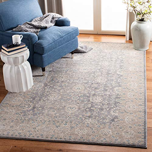 Safavieh Sofia Collection SOF330B Vintage Light Grey And Beige Distressed Area Rug 9 X 12 0 1