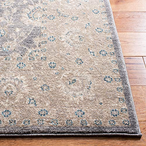 Safavieh Sofia Collection SOF330B Vintage Light Grey And Beige Distressed Area Rug 9 X 12 0 2