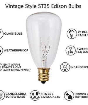 25Ft Outdoor Edison Bulb String Lights With 27 Edison ST35 Bulbs Plus 2 Extra Bulbs UL Listed For IndoorOutdoor Decor Perfect For Patio Garden Backyard Porches Bistro Party Black Wire 0 1 300x360