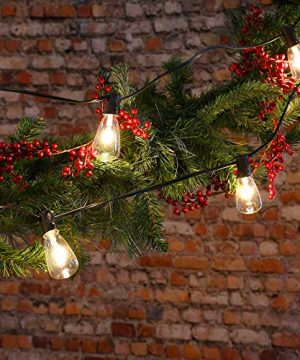 25Ft Outdoor Edison Bulb String Lights With 27 Edison ST35 Bulbs Plus 2 Extra Bulbs UL Listed For IndoorOutdoor Decor Perfect For Patio Garden Backyard Porches Bistro Party Black Wire 0 5 300x360