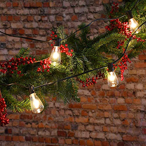 25Ft Outdoor Edison Bulb String Lights With 27 Edison ST35 Bulbs Plus 2 Extra Bulbs UL Listed For IndoorOutdoor Decor Perfect For Patio Garden Backyard Porches Bistro Party Black Wire 0 5