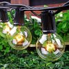 50Ft String Lights G40 String Lights With 52 Clear Bulbs UL Listed For Patio Garden Wedding Backyard Deck Pergolas Gazebos Blacony String Lights Indoor Outdoor Commercial Use Black Wire 0 100x100