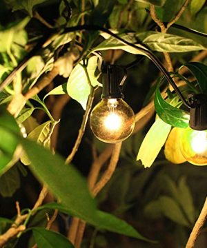 50Ft String Lights G40 String Lights With 52 Clear Bulbs UL Listed For Patio Garden Wedding Backyard Deck Pergolas Gazebos Blacony String Lights Indoor Outdoor Commercial Use Black Wire 0 3 300x360