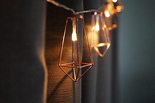 LuxLumi Diamonds Are Forever Rose String Lights Gold Wire Caged Soft White 20 LED For Rustic Bedroom Nursery Dorm Home Dcor Teen Kids Baby Bridal Shower 4th Of July Pack Of 2 0 2