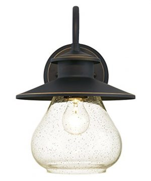 Westinghouse Lighting 6313500 Delmont One Light Outdoor Wall Fixture Oil Rubbed Bronze Finish With Highlights With Clear Seeded Glass 0 0 300x360