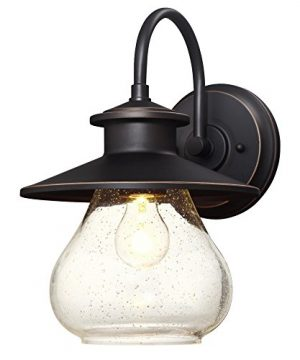 Westinghouse Lighting 6313500 Delmont One Light Outdoor Wall Fixture Oil Rubbed Bronze Finish With Highlights With Clear Seeded Glass 0 300x360
