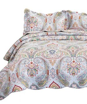 Bedsure 100 Cotton Printed Twin Quilt Set Vintage Paisley Pattern Pre Washed 2 Piece Quilt With 1 Sham All Season Bed Cover Machine Washable Bedspread Coverlet 0 300x360
