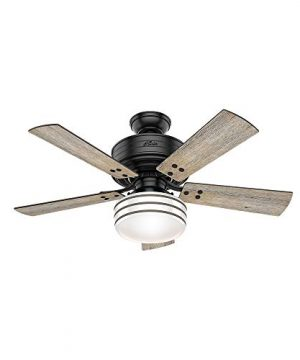 Hunter Indoor Outdoor Ceiling Fan With LED Light And Remote Control Cedar Key 44 Inch Black 54149 0 300x360