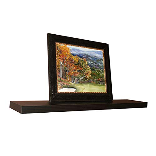 InPlace Shelving Espresso Lewis Hyman 9084650 Floating Wall Shelf 4724 Inch Wide By 2 Inch High 4724 In W X 102 In D X 2 In H 0 0