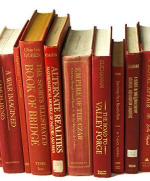 Decorative Books Authentic Decor Monochromatic Red 0 0 300x360