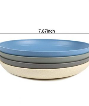 Shopwithgreen Lightweight Wheat Straw Plates 4 Pack 78 Unbreakable Dinner Plates Dishwasher Microwave Safe BPA Free For KidsChildrenToddler Adult 0 0 300x360